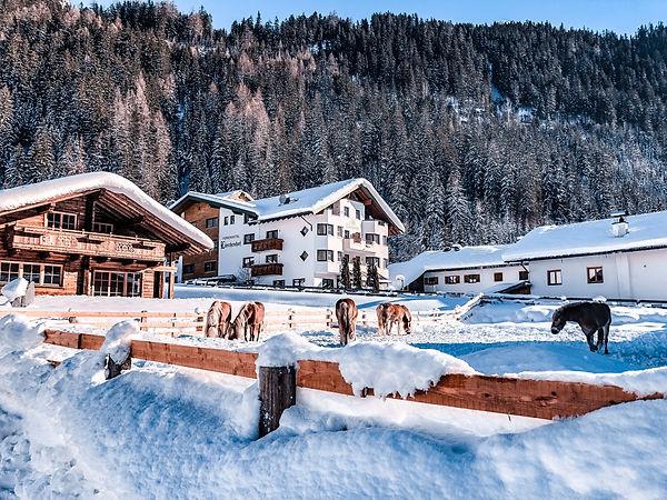 winterwonderland JPG 4.jpg
