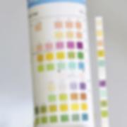 bandelettes urinaires - dépistage Rénif