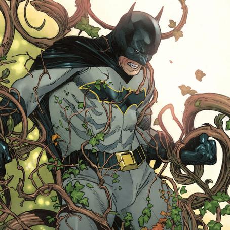 Batman Vol.6: Bride or Burglar Book Review