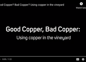 Digging into Copper in the Vineyard