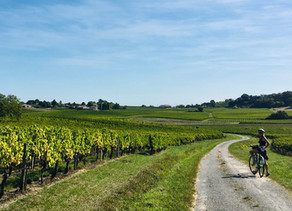 A Resolution for 2020: Freewheel in Fronsac