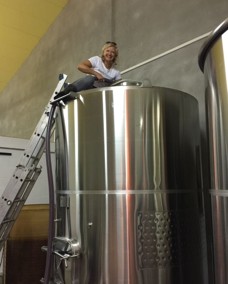 stainless steel vat for winemaking