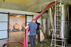 Preparing the winery.jpeg