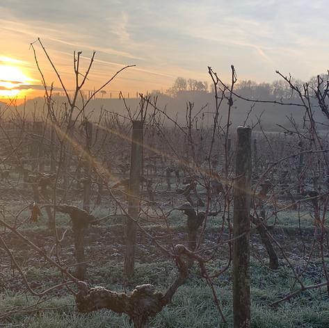 Frosty Morning in February.jpeg