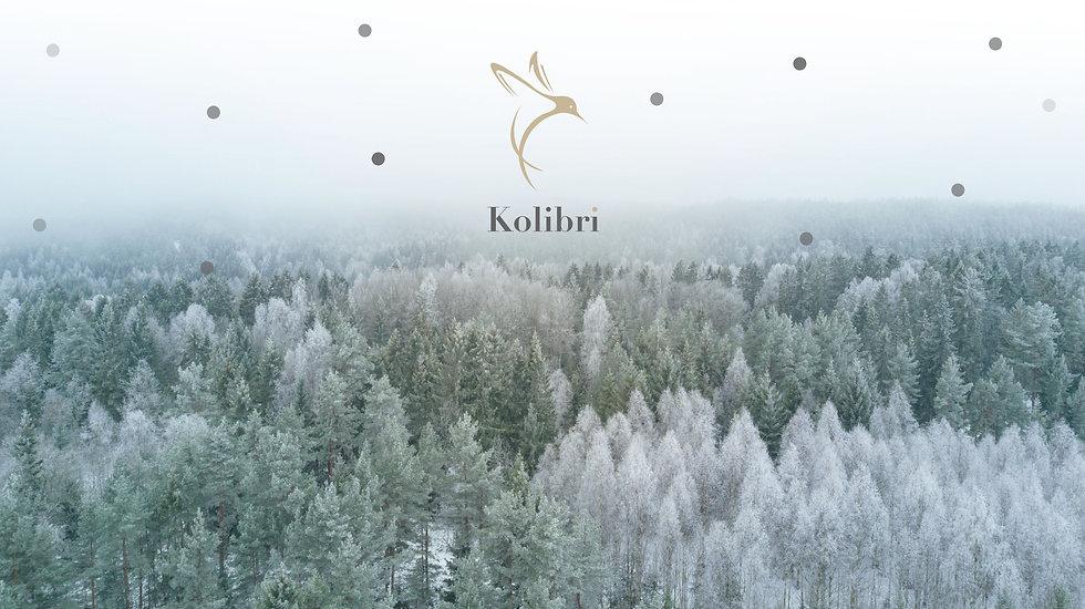 Kolibri-Winter-Banner.jpg