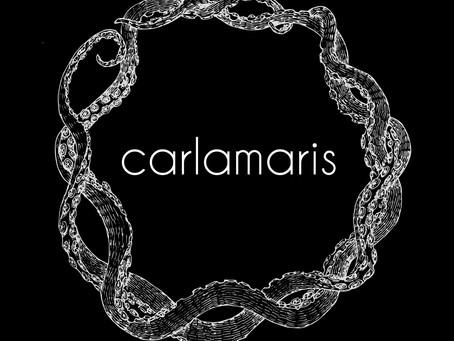Carlamaris wird Teil der Kolibri-Familie