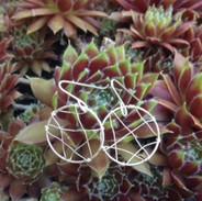 Silver Web Hoops