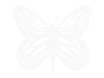 ButterflyLogo.png