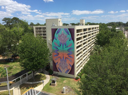 Murray Hill Mural Project