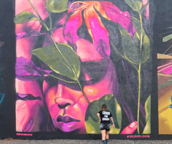 for Galera Collective in Wynwood