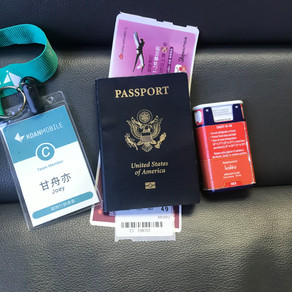 8 Key Things to Prepare Before Traveling to a Different Country with a Food Allergy