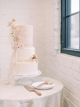 wedding cake asterisk denver bree wooly photography.jpg