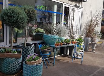 Blumen-Freuden in Corona-Zeiten: Bestellung auf Lieferung oder zur Abholung sowie Selbstbedienung vo