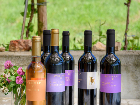 1. Mai 2021 - Degustation und Weinverkauf