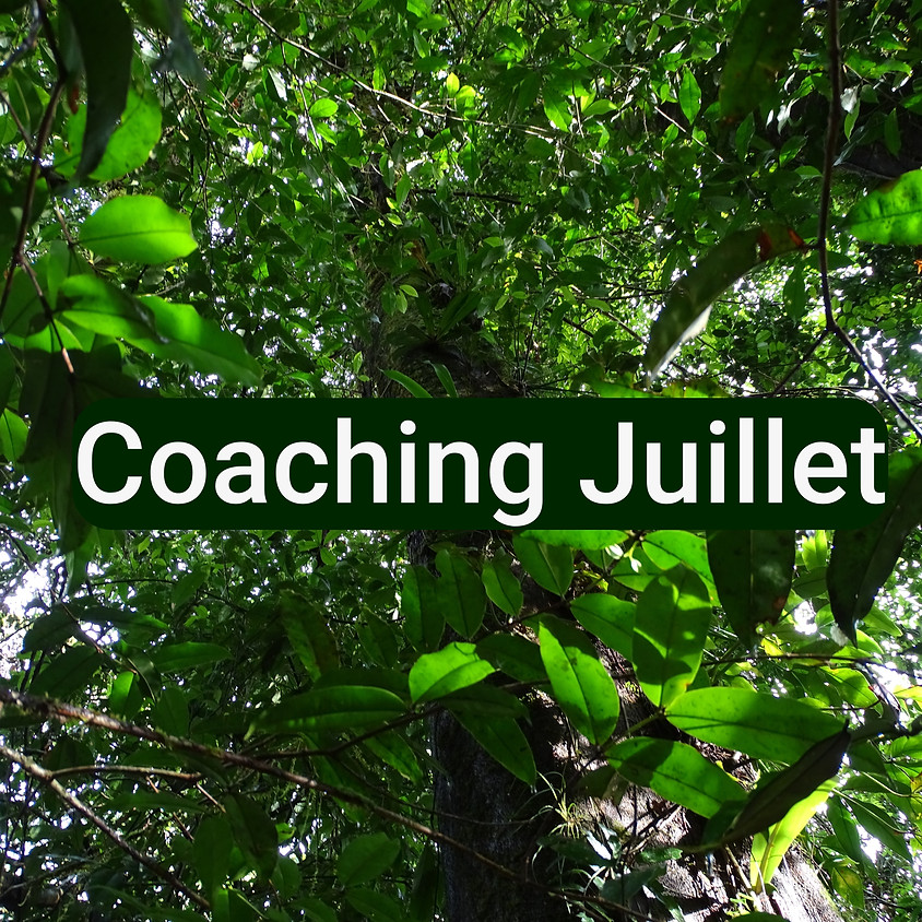 Coaching: Booster sa Relation Actuelle