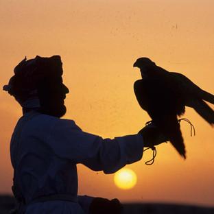 A traditional Emirati falconer with his falcon