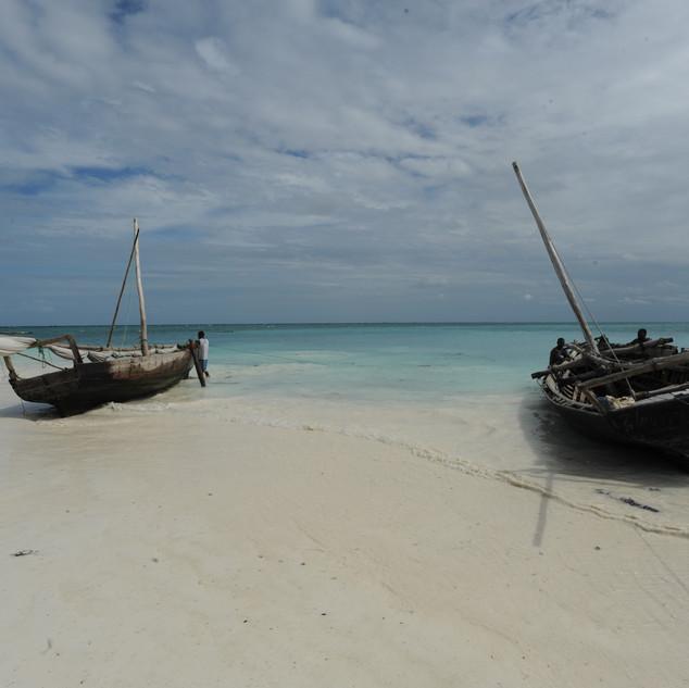 Traditional fishing boats, Zanzibar, Tanzania