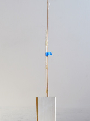 Mix media & found object 22 x 9 x 310 cm 2015