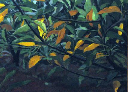 Farid Jahangir Acrylic on canvas  110 x 130 cm  2004