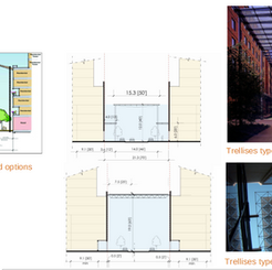 Cross sections, concepts of trellis and attached/detached options