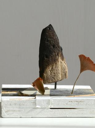 Wood, screws, tape, paint, dry leaves 12 x 10 x 15 cm 2015