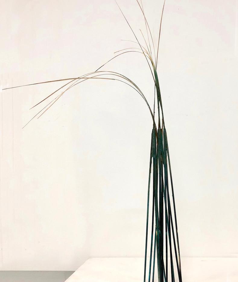 Shaqayeq Arabi Wood sticks, reeds, paint & glue 2018