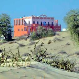 View from desert
