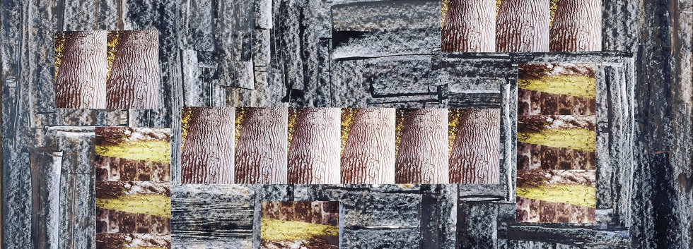 Behjat Sadr Oil Photo collage on paper 110 x 60 cm 1985