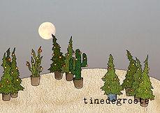 kerstcactus.jpg