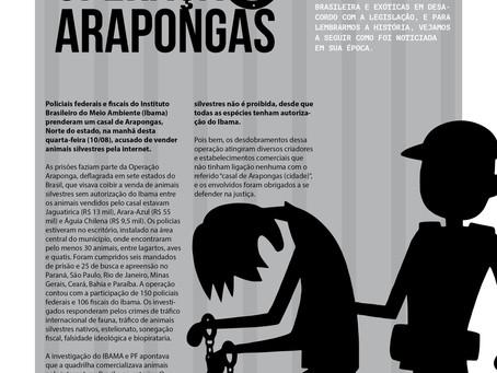 Desfecho da operação Arapongas