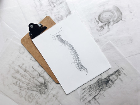 Understanding and Preventing Your Low Back Pain