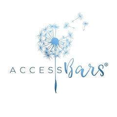 Access BARS.jpg