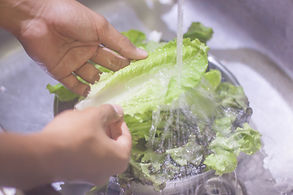 close up of washing the vegetables.jpg