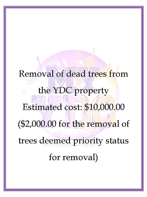 Removal of Dead Trees