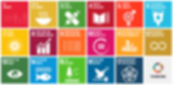 17-SDG home page.png