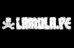 lamula logo.png