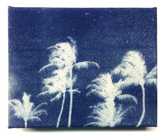 6 Palm Trees