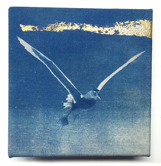 Albatross 2 with Gold Leaf
