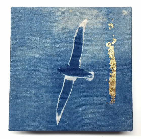 Albatross with Gold Leaf