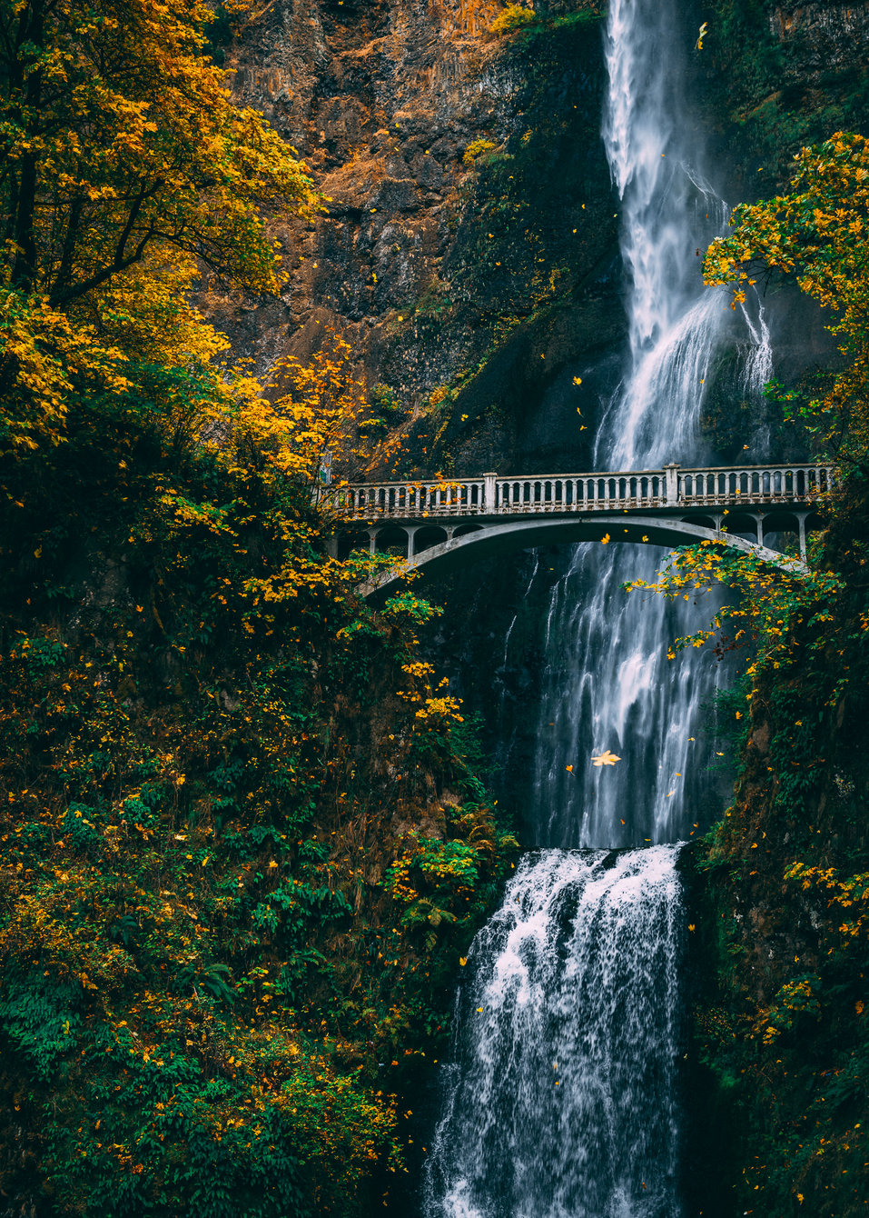 Maltnomah falls
