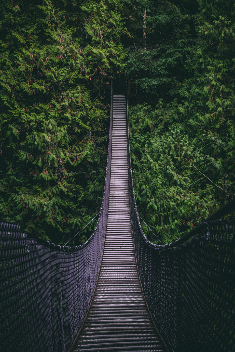 Vancouver Suspension Bridge