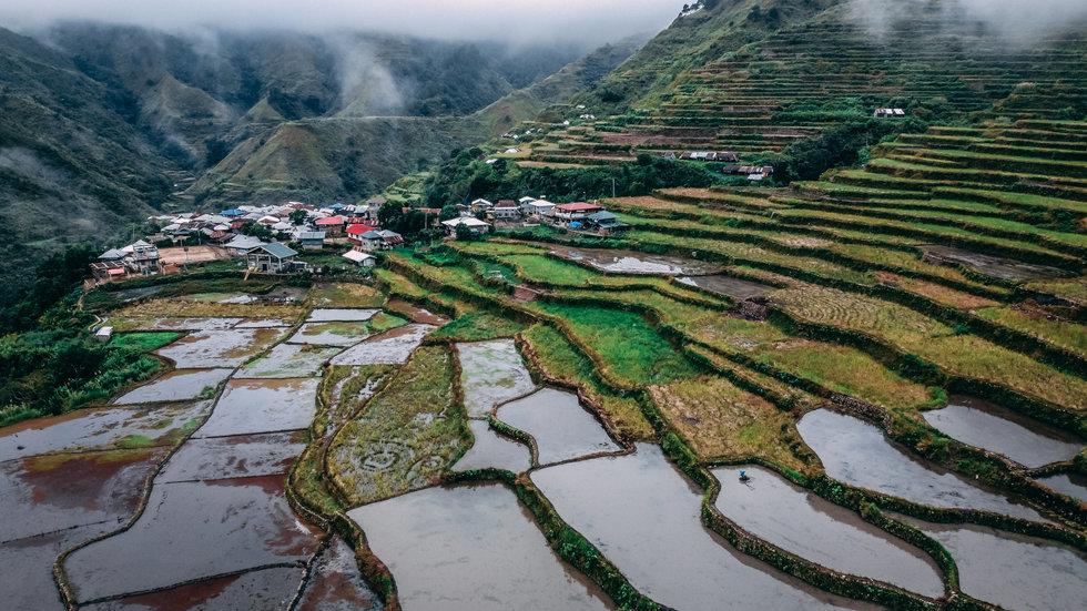 Buscalon rice terrace
