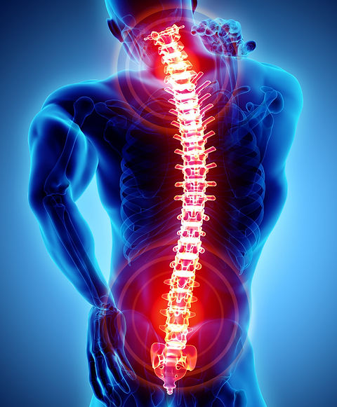 orthocarolinabackpaintriage (1).jpeg