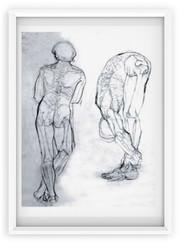 drawing / anatomie