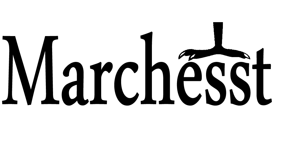 octopus_referans_marchesst