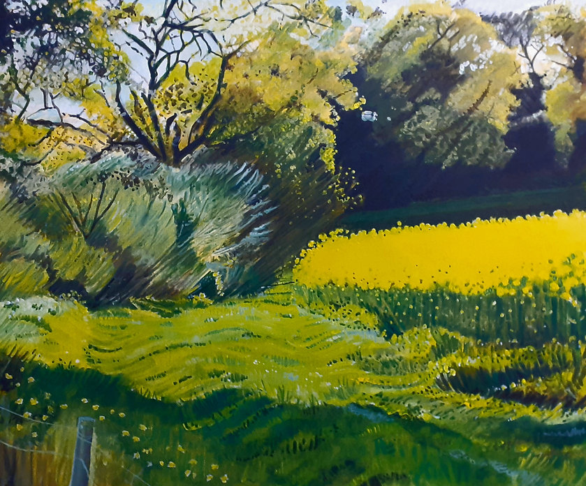 07 Yellow field no 2 Mike Stevens sale.j