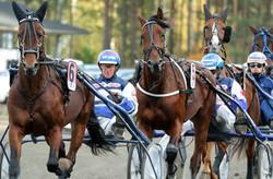 Kuva Anu Leppänen raviurheilu