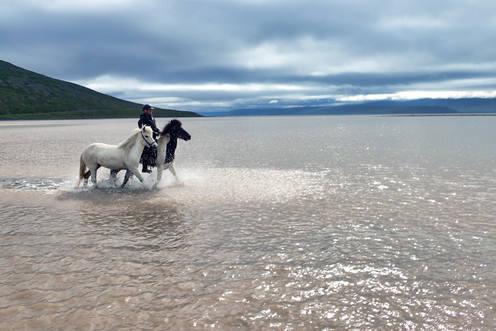 Hevosvaelluksella Islannissa / On a horse trip in Westfjords, Iceland