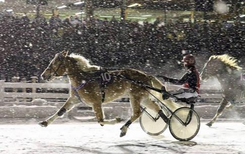 Pikku Ryti Talvi / Winter