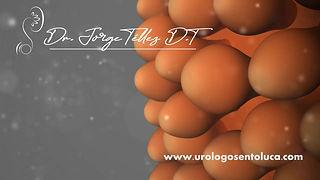 Serviciosespecializados en Urología | Toluca Metepec Dr. Jorge Téllez 72 22 268 233 Soy un especialista empático con el paciente, con intención de generar confianza y seguridad para poder otorgarle una atención digna y de la mejor calidad. Experto Urología Oncológica, Endoscópica y mínima invasión.